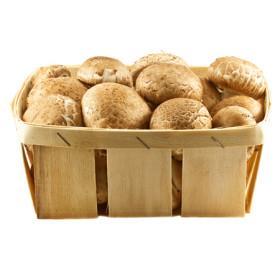 Kastanje-champignons
