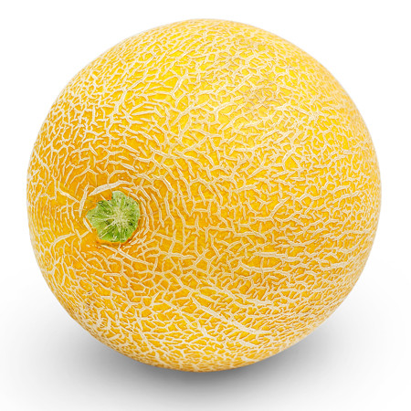 Galia Meloen